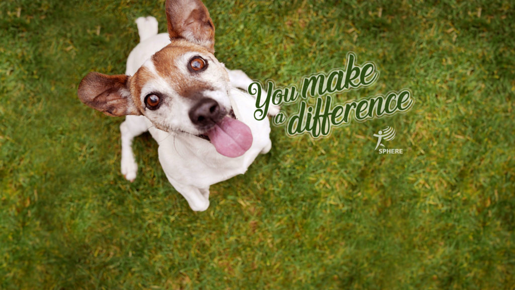 Dog with mention You make a difference.